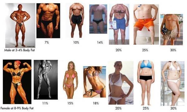 відсоток жиру