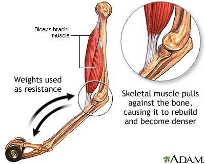 щільність кісткової тканини