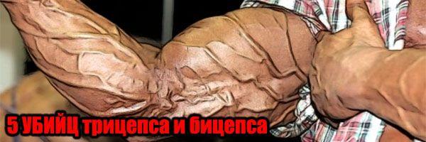 5-ть УБИВЦЬ біцепси та тріцепсамі (для масивних рук) - Денис Борисов