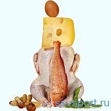 Білкова їжа - список продуктів