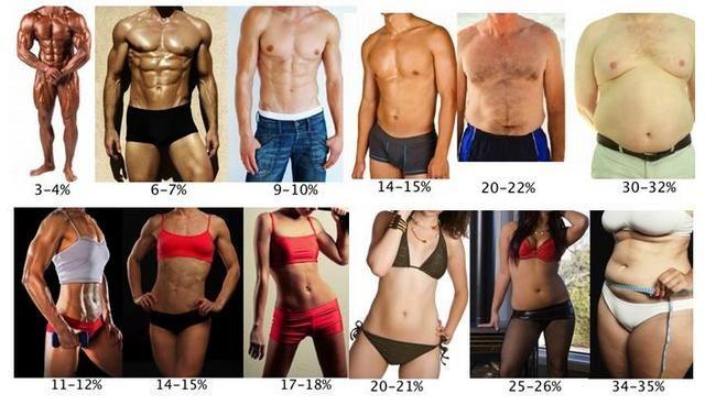 відсоток жиру у чоловіків і жінок