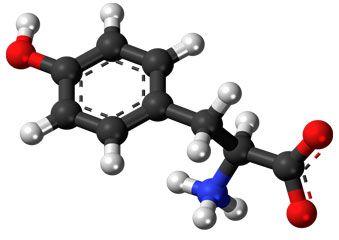 Що таке l-тирозин? Опис добавки, властивості, як приймати, побічні ефекти