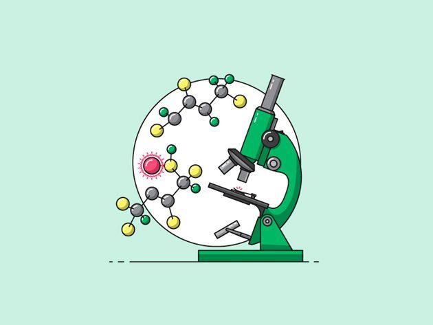 Форми сироваткового протеїну