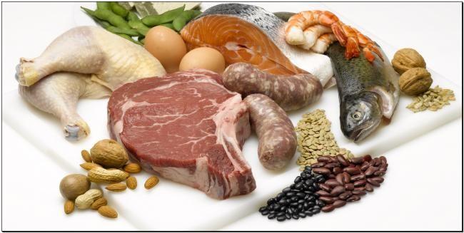 Білкові продукти в нашому харчуванні