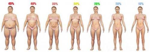 День 40. Відсоток жиру у жінок