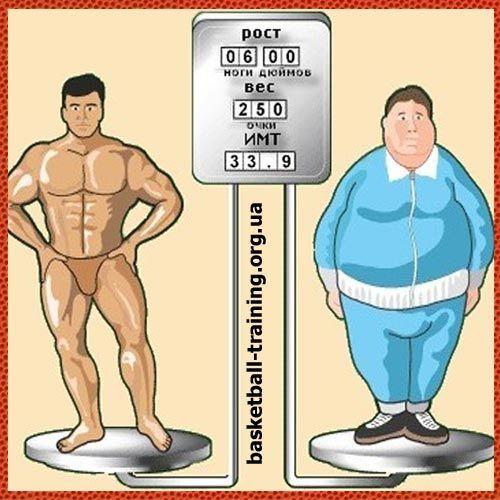 Індекс маси тіла: що таке імт і як його розрахувати?