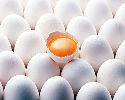 Яєчний протеїн: перевірено часом