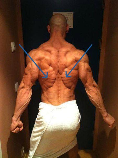 Як накачати найширші м`язи спини?
