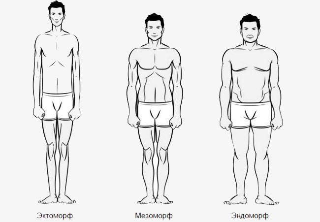 Як визначити тип статури?