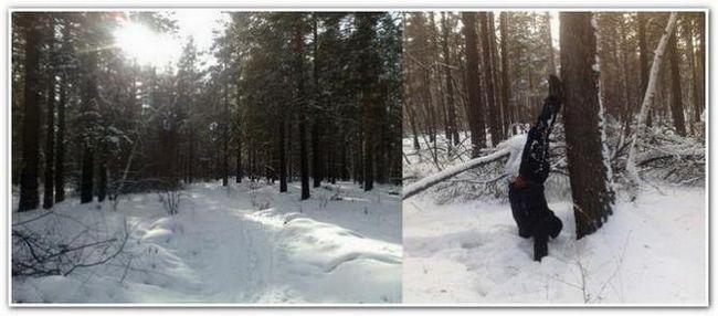 Зимовий ліс і стійка на руках біля дерева