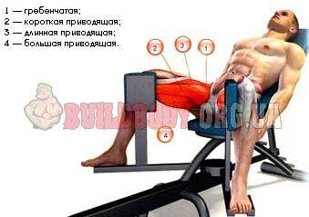 Як правильно виконувати зведення ніг в тренажері?