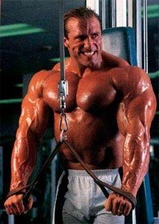 Обсяг і інтенсивність навантаження Вашої тренування з бодібілдингу і фітнесу _ Ob`em i intensivnost` nagruzki Vashej trenirovki po bodibildingu i fitnesu