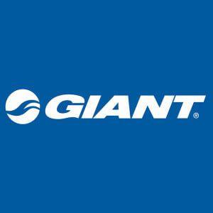 Giant - тайванська компанія з виробництва велосипедів