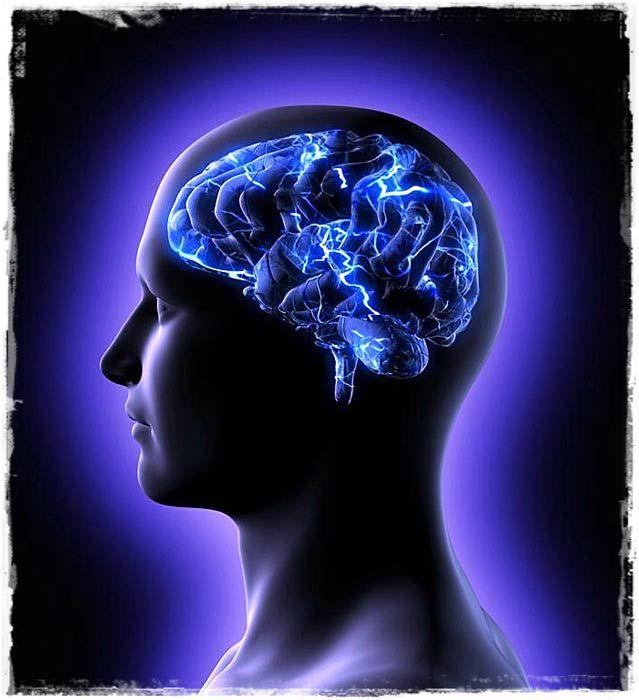 Мозок кето дієта