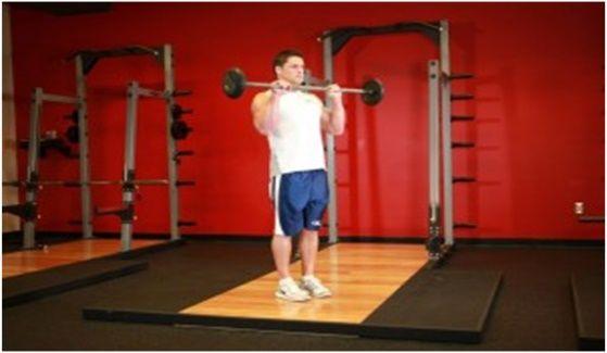 biceps-obrat
