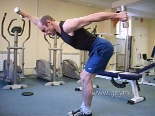Махи гантелями вперед-назад в нахилі для дельтовидних і трапецієподібних м`язів.