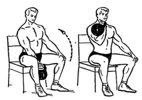 giri-biceps