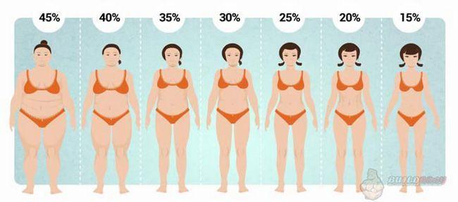 Як виглядає тіло з однаковою масою, але з великим відсотком жиру