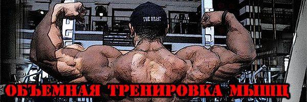 Об`ємна тренування м`язів (суть культуризму)