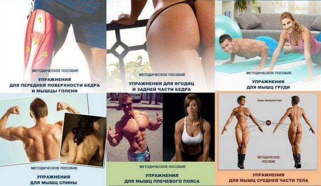 Силові вправи