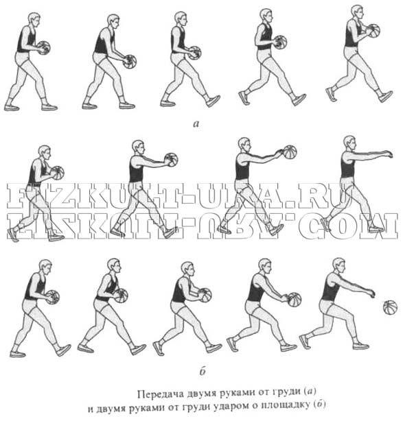 Передача м`яча двома руками від грудей