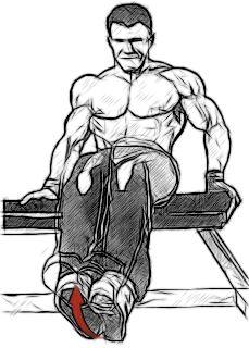 Підйом ніг сидячи