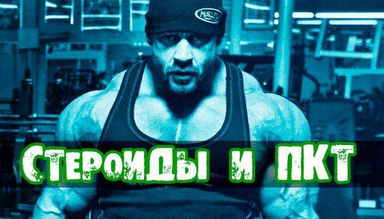 pkt-steroid