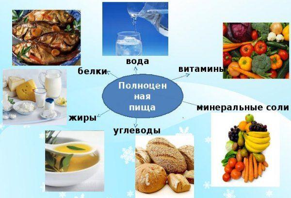 повноцінна їжа