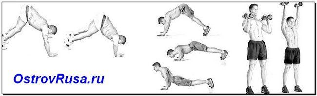 вертикальні жими вправи