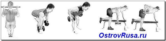 горизонтальні тяги вправи