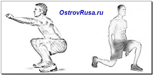 коліно-домінантні вправи