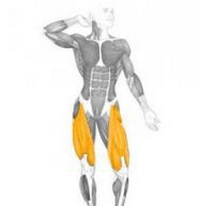 Основна група м`язів вправи Випади з гантелями