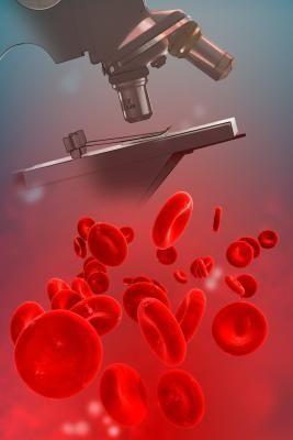 Продукти підвищують гемоглобін