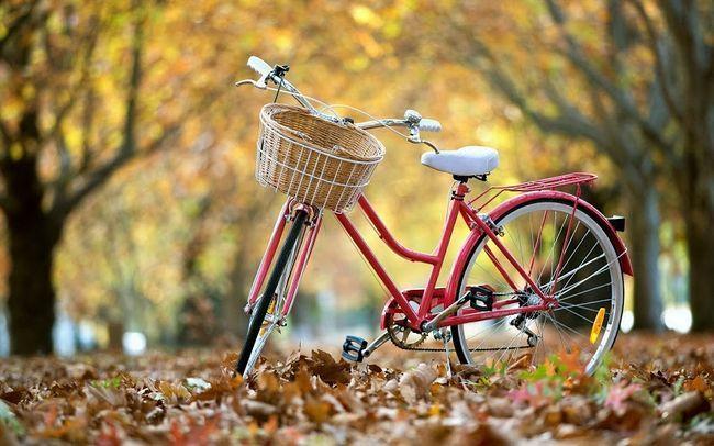 велосипед напрокат в Харкові