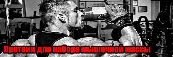 Протеїн для набору м`язової маси: Скільки в Порції?
