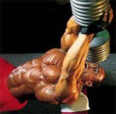 Робота м`язів на тренуванні і процес відновлення їх у години відпочинку _ Rabota myshc na trenirovke i process vosstanovleniya ih v chasy otdyha