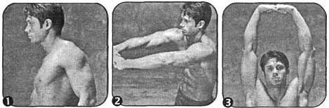 Комплекс для розвитку гнучкості плечей