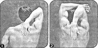 Комплекс вправ для розвитку гнучкості трицепса