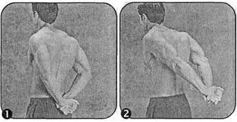 Комплекс вправ для розвитку гнучкості грудної клітини