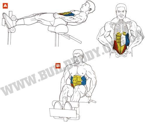 Техніка виконання вправи підйоми тулуба на римському стільці