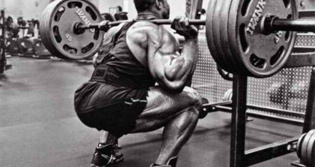 З яких м`язів починати тренування?