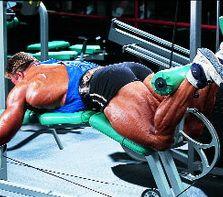 Основна група м`язів вправи Згинання ніг лежачи
