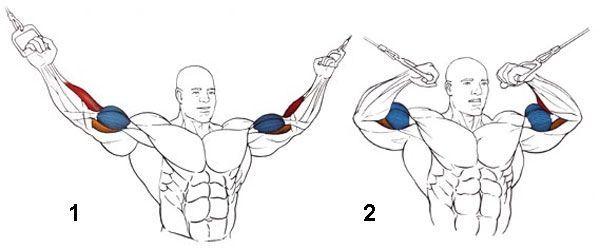 Тренування рук на тренажері для кросоверів