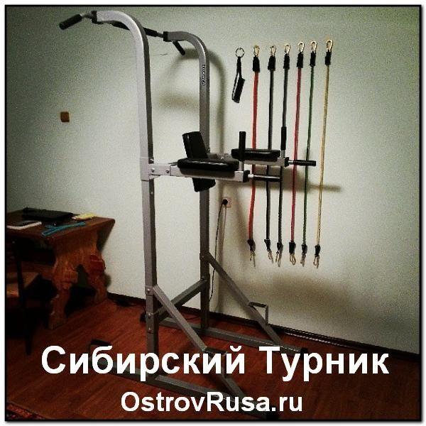 Сибірський Турнік експеримент