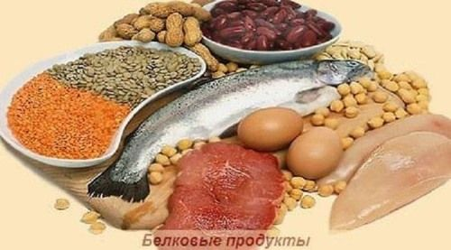 belok-food