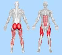 Степпер - які м`язи працюють під час тренування
