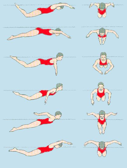 стилі плавання в картинках