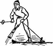Структура і зміст спеціальної швидкісно-силової підготовки юних хокеїстів у річному тренувальному циклі