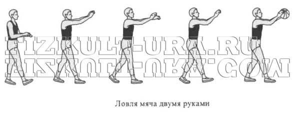 Ловля м`яча двома руками в баскетболі
