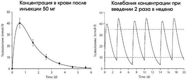 Тестостерон пропіонат: опис, курс, побічні ефекти, відгуки